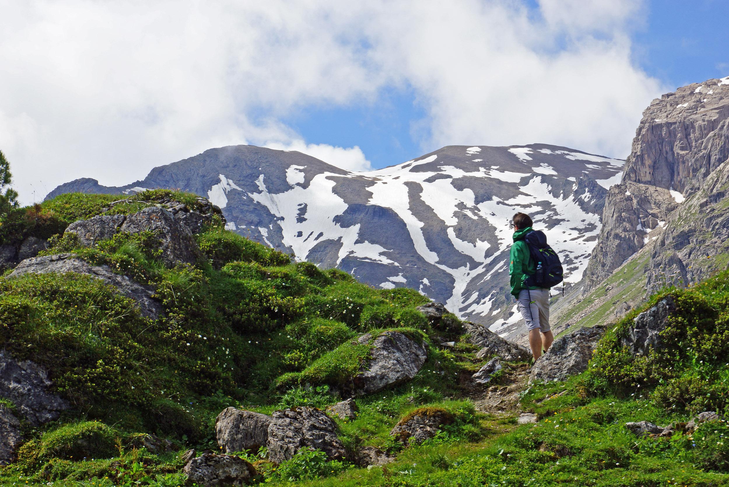 Bergkäse & Almrosen: Auf Entdeckungstour in der Wattener Lizum